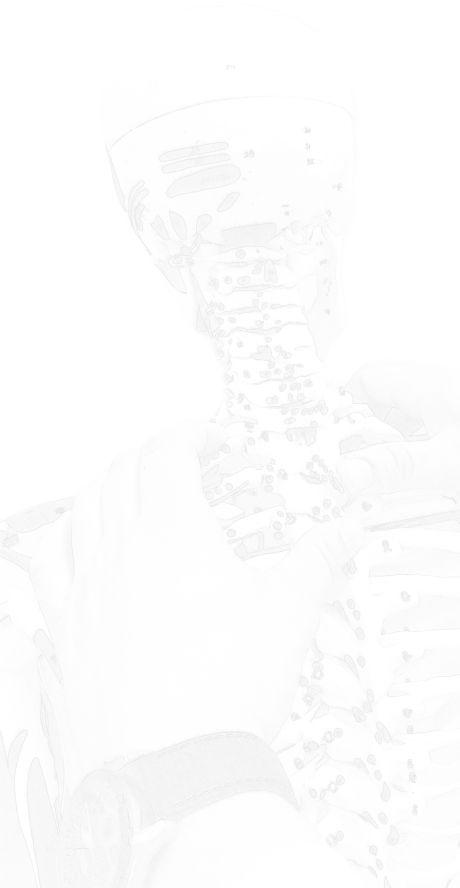 kręgi